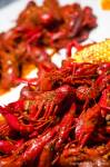 Crawfish at The Yabby Hut, Lakewood, Colorado 031512